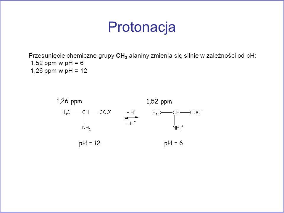 Protonacja pH = 12pH = 6 1,52 ppm 1,26 ppm Przesunięcie chemiczne grupy CH 3 alaniny zmienia się silnie w zależności od pH: 1,52 ppm w pH = 6 1,26 ppm