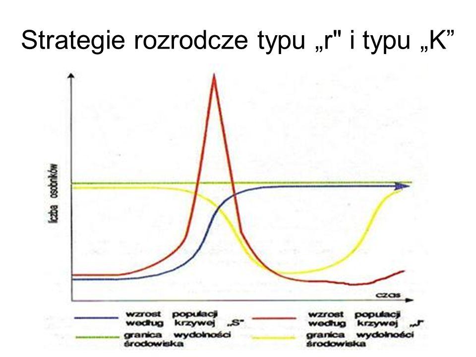 Strategie rozrodcze typu r