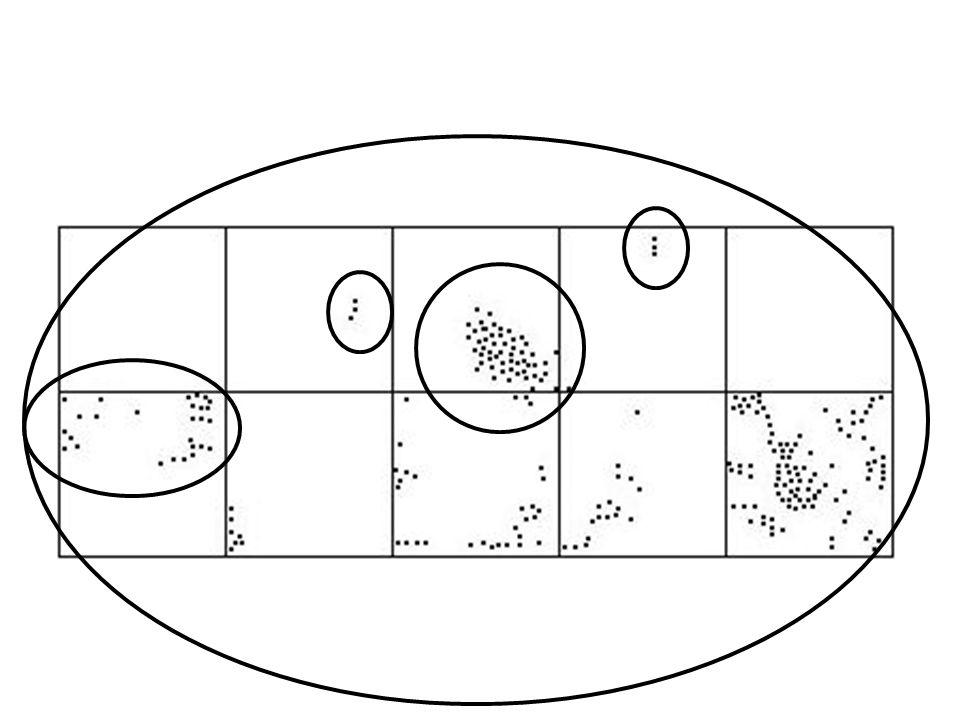 Cechy formalne Liczebność – całkowita liczba osobników w przyjętych granicach.