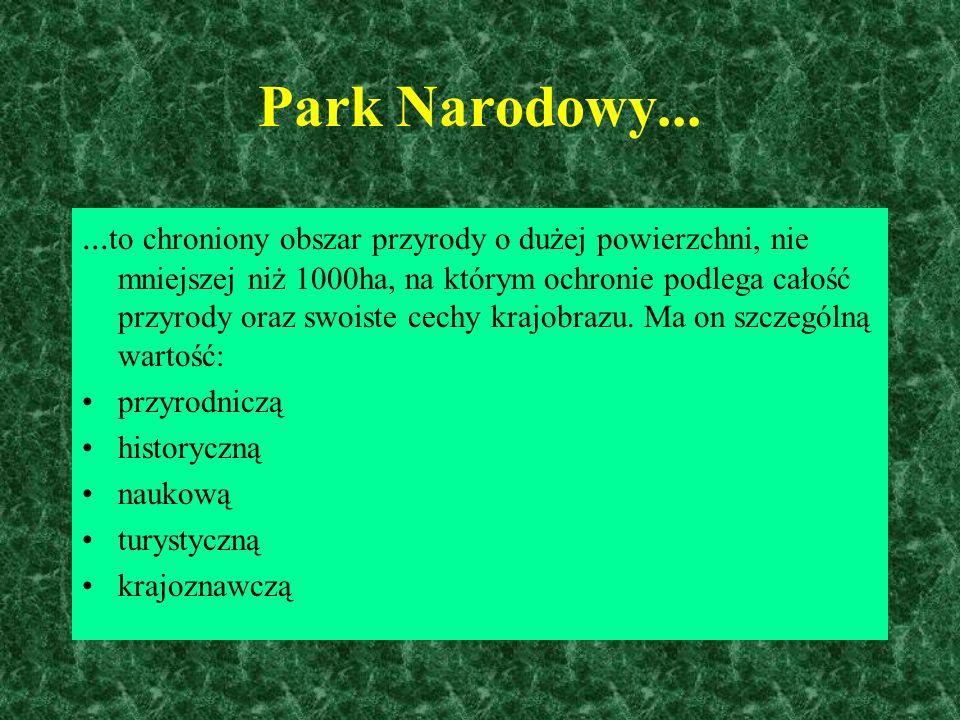 - Park narodowy - Park krajobrazowy - Obszar chronionego krajobrazu - Ochrona gatunkowa - Rezerwat przyrody - Pomnik przyrody Formy ochrony przyrody w