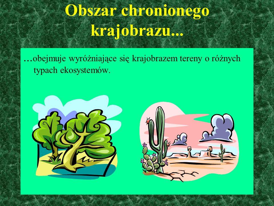 Park Narodowy...... to chroniony obszar przyrody o dużej powierzchni, nie mniejszej niż 1000ha, na którym ochronie podlega całość przyrody oraz swoist