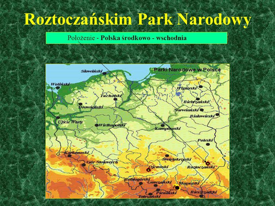 Rezerwat przyrody...... jest obszarem obejmującym zachowane w stanie naturalnym lub mało zmienionym ekosystemy, określone gatunki roślin i zwierząt, e