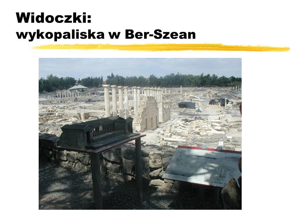 Widoczki: wykopaliska w Ber-Szean