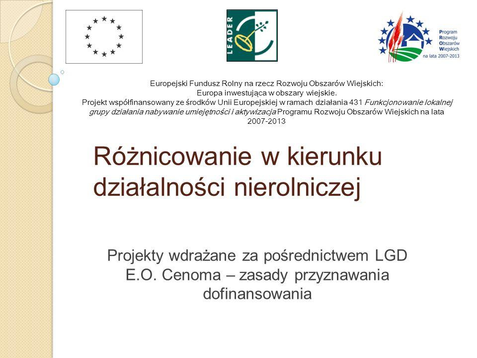 Różnicowanie w kierunku działalności nierolniczej Projekty wdrażane za pośrednictwem LGD E.O. Cenoma – zasady przyznawania dofinansowania Europejski F