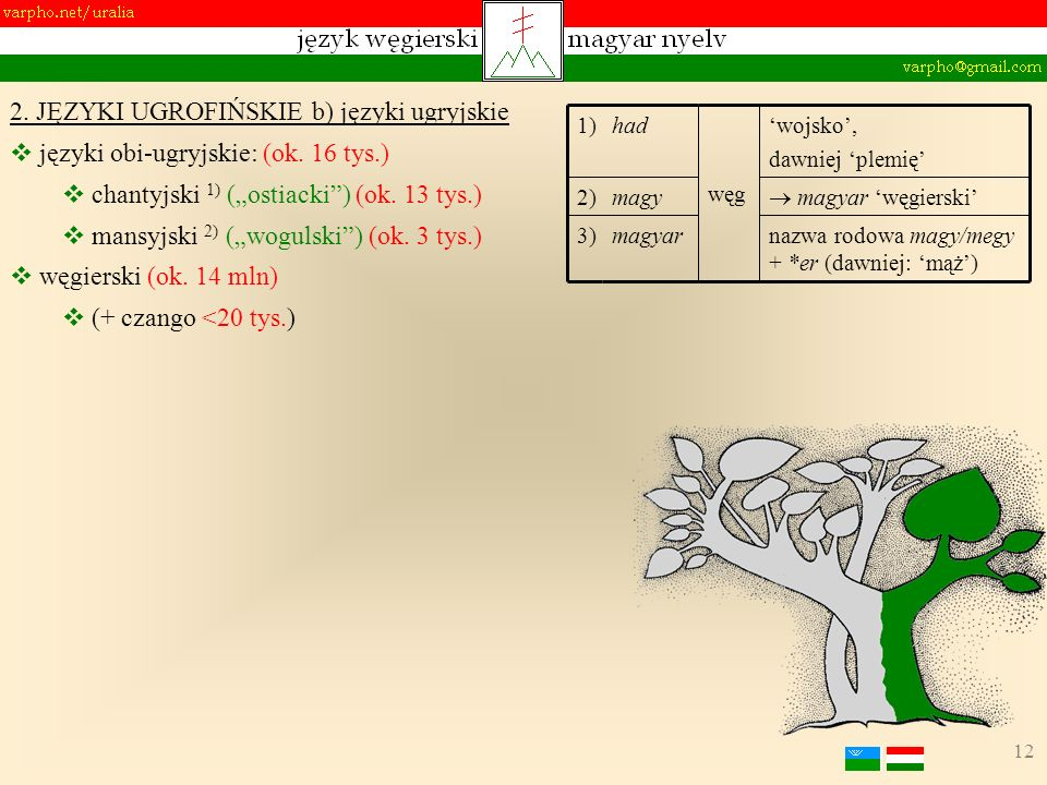 12 2. JĘZYKI UGROFIŃSKIE b) języki ugryjskie języki obi-ugryjskie: (ok. 16 tys.) chantyjski 1) (ostiacki) (ok. 13 tys.) mansyjski 2) (wogulski) (ok. 3