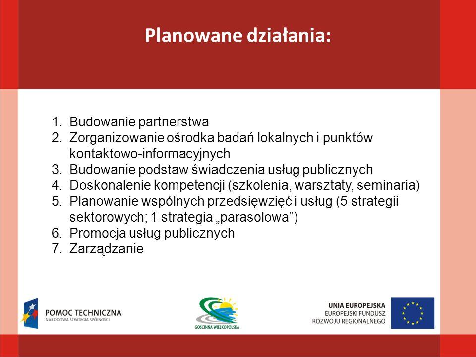 Planowane działania: 1.Budowanie partnerstwa 2.Zorganizowanie ośrodka badań lokalnych i punktów kontaktowo-informacyjnych 3.Budowanie podstaw świadczenia usług publicznych 4.Doskonalenie kompetencji (szkolenia, warsztaty, seminaria) 5.Planowanie wspólnych przedsięwzięć i usług (5 strategii sektorowych; 1 strategia parasolowa) 6.Promocja usług publicznych 7.Zarządzanie