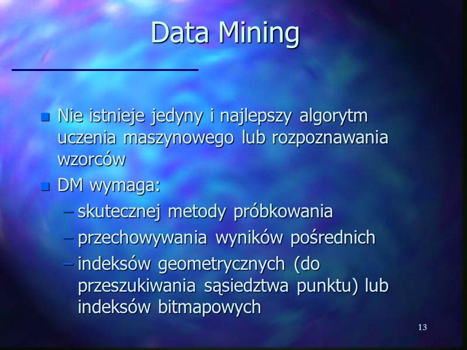 13 Data Mining n Nie istnieje jedyny i najlepszy algorytm uczenia maszynowego lub rozpoznawania wzorców n DM wymaga: –skutecznej metody próbkowania –p