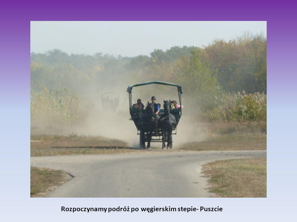 Rozpoczynamy podróż po węgierskim stepie- Puszcie