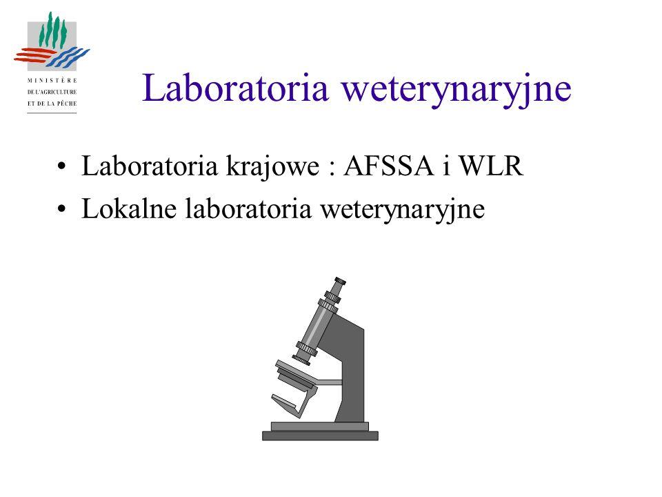 Laboratoria weterynaryjne Laboratoria krajowe : AFSSA i WLR Lokalne laboratoria weterynaryjne
