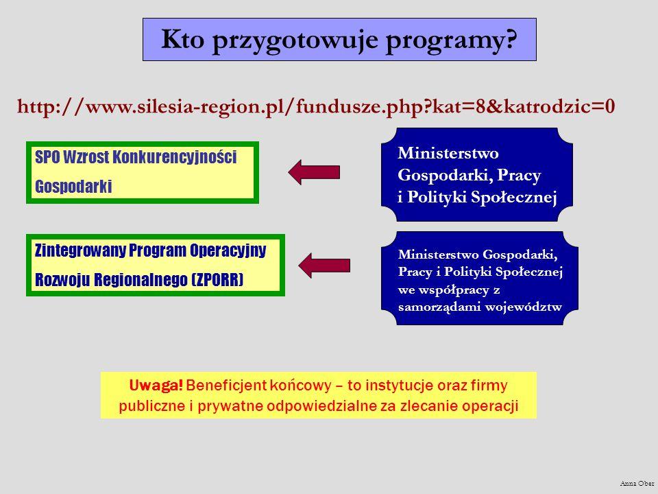 Kto przygotowuje programy? SPO Wzrost Konkurencyjności Gospodarki Zintegrowany Program Operacyjny Rozwoju Regionalnego (ZPORR) Ministerstwo Gospodarki