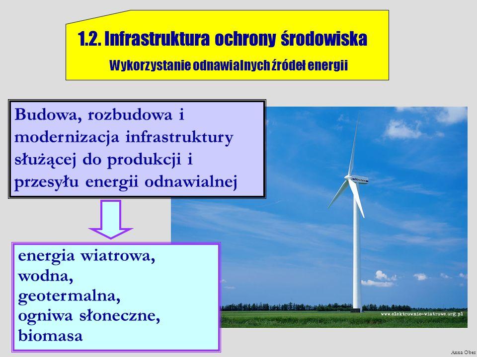 Anna Ober 1.2. Infrastruktura ochrony środowiska Wykorzystanie odnawialnych źródeł energii energia wiatrowa, wodna, geotermalna, ogniwa słoneczne, bio