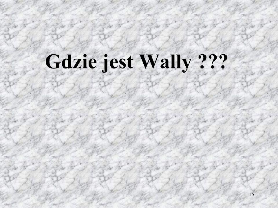 15 Gdzie jest Wally ???