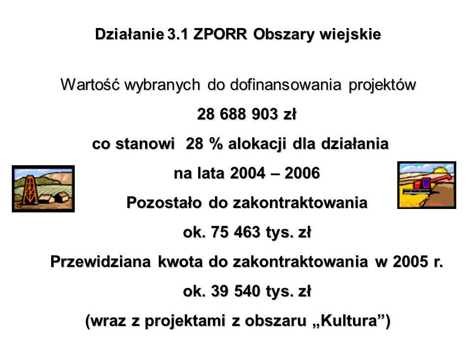Działanie 3.1 ZPORR Obszary wiejskie Wartość wybranych do dofinansowania projektów 28 688 903 zł co stanowi 28 % alokacji dla działania na lata 2004 –