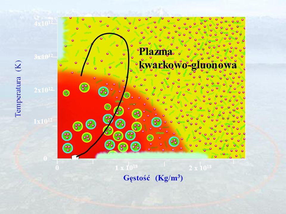 (przestrzeń) (czas) (stan przedrównowagowy) (plazma kwarkowo-gluonowa (faza mieszana) (gaz hadronowy) (wymrażanie - emisja)