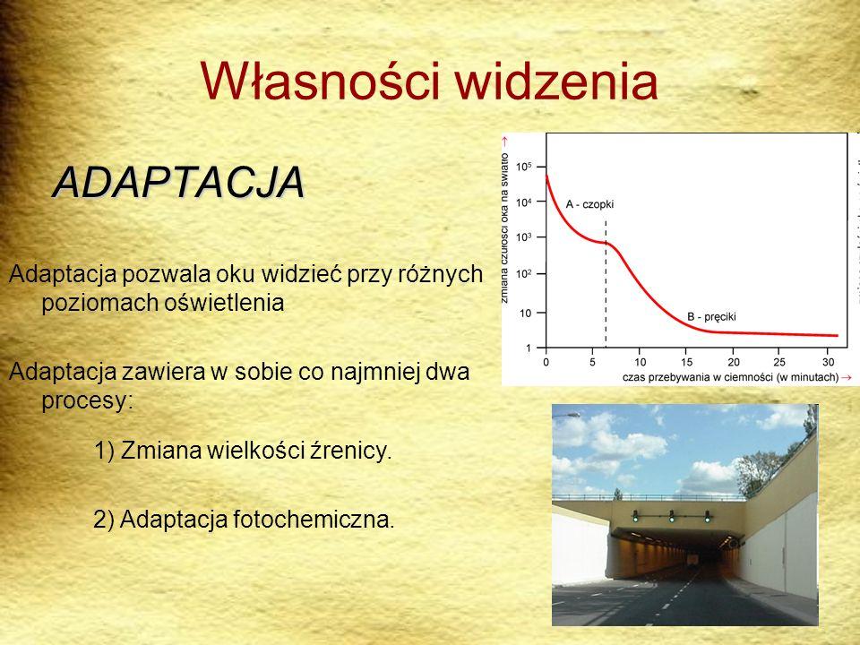 Własności widzenia ADAPTACJA Adaptacja pozwala oku widzieć przy różnych poziomach oświetlenia Adaptacja zawiera w sobie co najmniej dwa procesy: 1) Zm