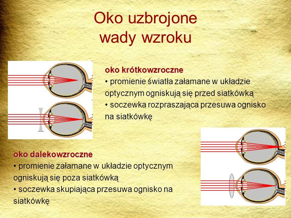 Oko uzbrojone wady wzroku oko dalekowzroczne promienie załamane w układzie optycznym ogniskują się poza siatkówką soczewka skupiająca przesuwa ognisko na siatkówkę oko krótkowzroczne promienie światła załamane w układzie optycznym ogniskują się przed siatkówką soczewka rozpraszająca przesuwa ognisko na siatkówkę