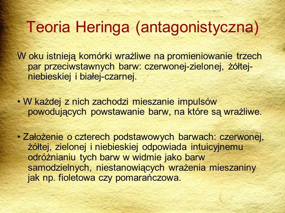 Teoria Heringa (antagonistyczna) W oku istnieją komórki wrażliwe na promieniowanie trzech par przeciwstawnych barw: czerwonej-zielonej, żółtej- niebie