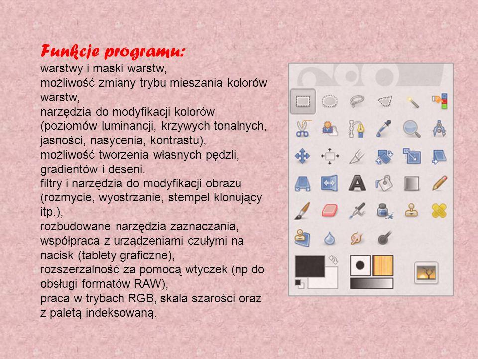 Funkcje programu: warstwy i maski warstw, możliwość zmiany trybu mieszania kolorów warstw, narzędzia do modyfikacji kolorów (poziomów luminancji, krzy