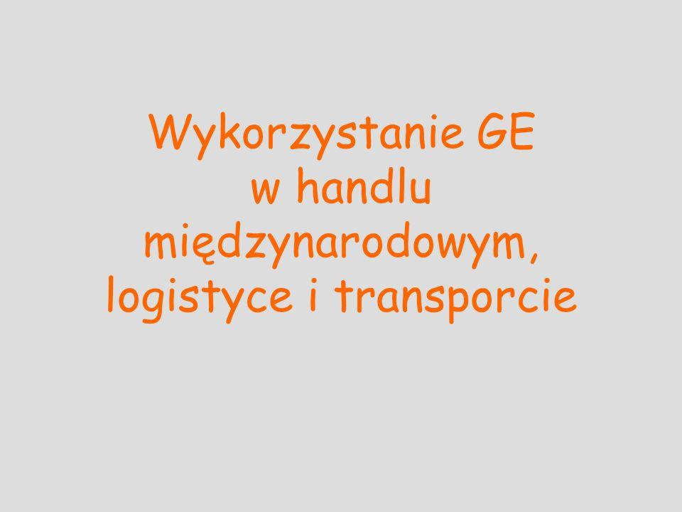 Program wykładów Wprowadzenie do GE Podstawy marketingu internetowego Rozwiązania e-commerce Płatności w Internecie Wykorzystanie GE w handlu międzynarodowym, logistyce i transporcie