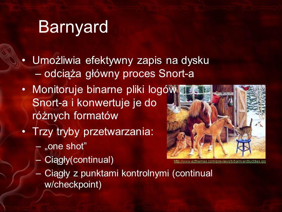Barnyard Umożliwia efektywny zapis na dysku – odciąża główny proces Snort-a Monitoruje binarne pliki logów Snort-a i konwertuje je do różnych formatów