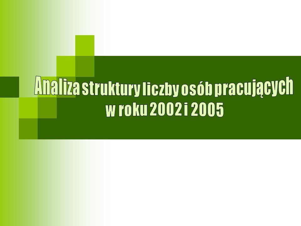 Analiza zmian w liczbie osób pracujących w 2002 i 2005 roku Liczba osób pracujących w Polsce w 2005 r.