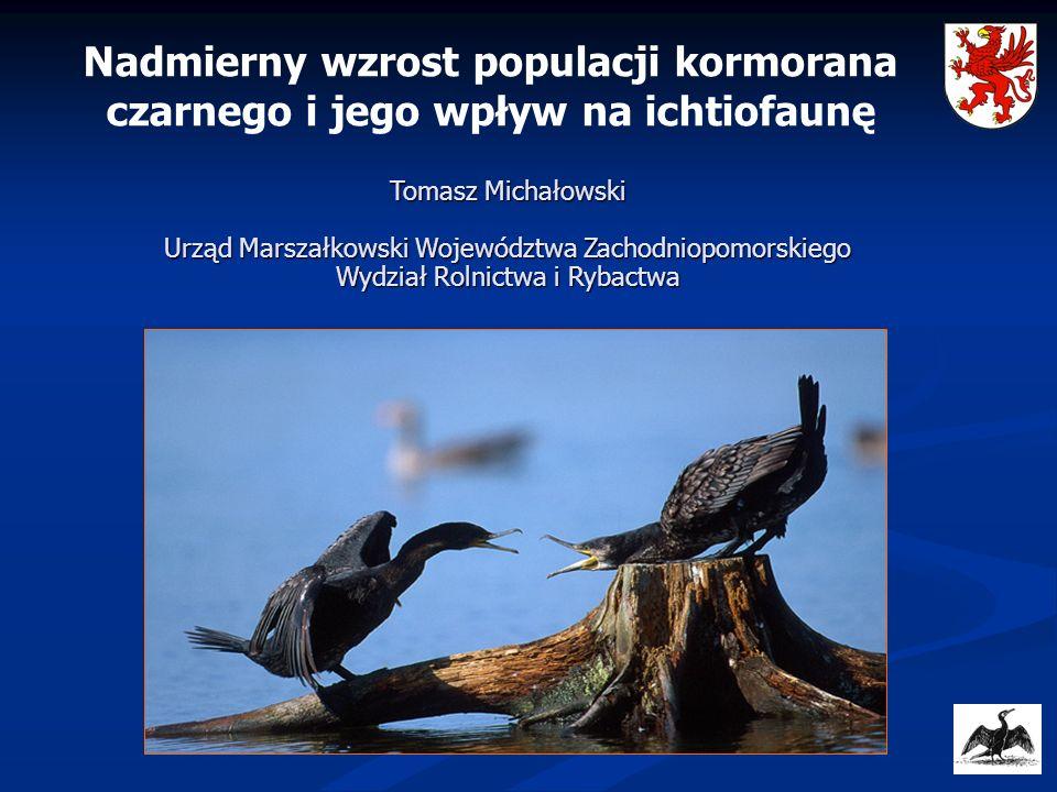 Nadmierny wzrost populacji kormorana czarnego i jego wpływ na ichtiofaunę Tomasz Michałowski Urząd Marszałkowski Województwa Zachodniopomorskiego Wydz