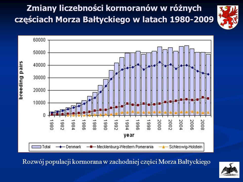Zmiany liczebności kormoranów w różnych częściach Morza Bałtyckiego w latach 1980-2009 Rozwój populacji kormorana w zachodniej części Morza Bałtyckieg