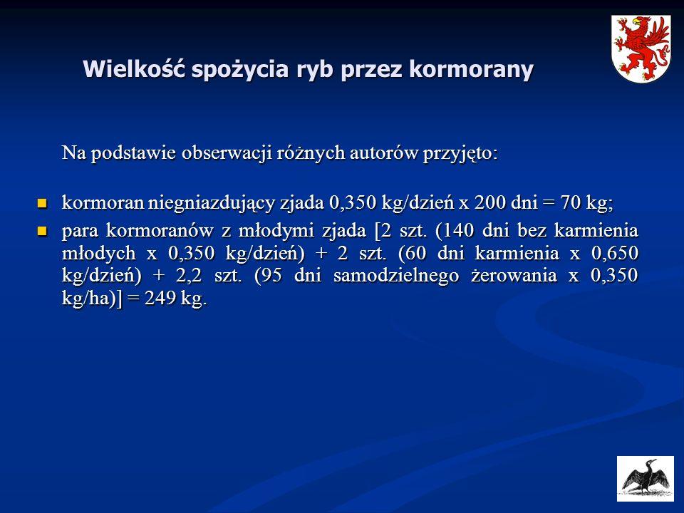 Wielkość spożycia ryb przez kormorany Na podstawie obserwacji różnych autorów przyjęto: kormoran niegniazdujący zjada 0,350 kg/dzień x 200 dni = 70 kg