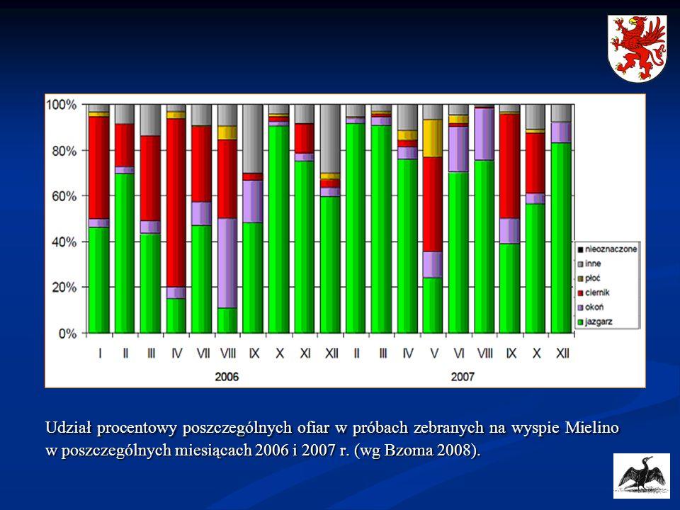 Udział procentowy poszczególnych ofiar w próbach zebranych na wyspie Mielino w poszczególnych miesiącach 2006 i 2007 r. (wg Bzoma 2008).