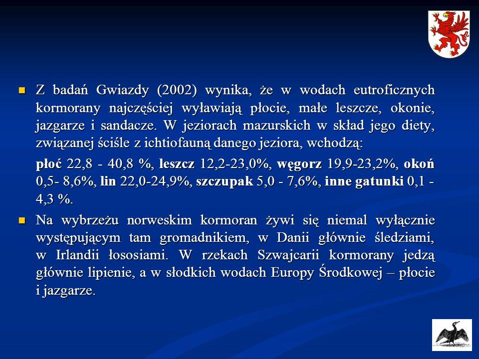 Z badań Gwiazdy (2002) wynika, że w wodach eutroficznych kormorany najczęściej wyławiają płocie, małe leszcze, okonie, jazgarze i sandacze. W jeziorac