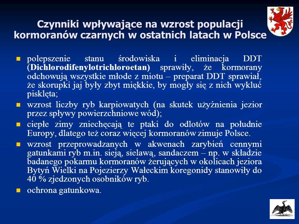 Czynniki wpływające na wzrost populacji kormoranów czarnych w ostatnich latach w Polsce polepszenie stanu środowiska i eliminacja DDT (Dichlorodifenyl