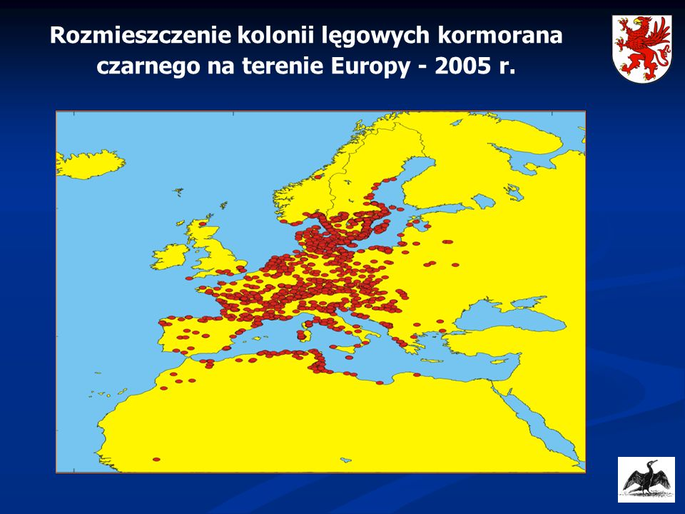 Wielkość populacji par lęgowych kormoranów czarnych w rejonie Morza Bałtyckiego – 2006 r.