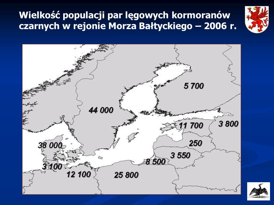 Zmiany liczebności kormoranów w różnych częściach Morza Bałtyckiego w latach 1980-2009 Rozwój populacji kormorana w zachodniej części Morza Bałtyckiego