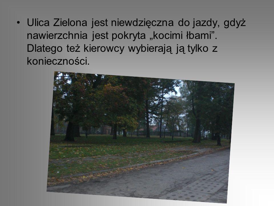 Park przy ulicy Zielonej jest to ostatnia ulica odchodząca od Zamkowej w kierunku południowym i łączy się z ulicą Moniuszki