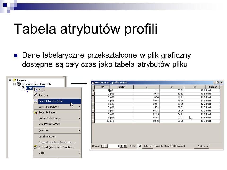 Tabela atrybutów profili Dane tabelaryczne przekształcone w plik graficzny dostępne są cały czas jako tabela atrybutów pliku