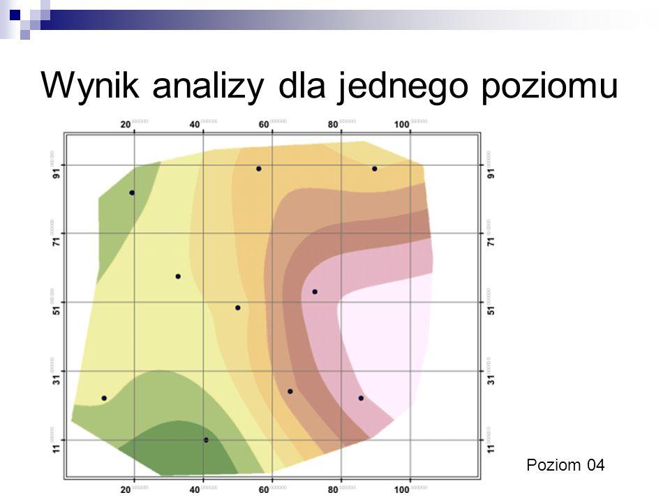 Wynik analizy dla jednego poziomu Poziom 04