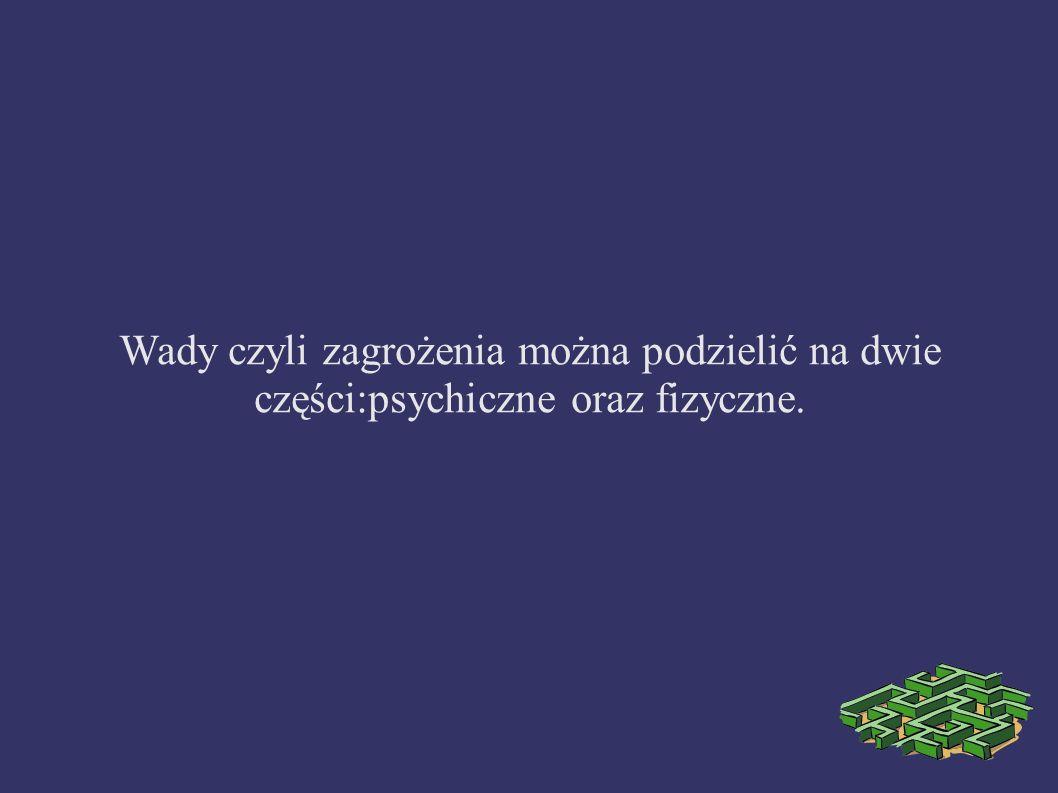 Wady czyli zagrożenia można podzielić na dwie części:psychiczne oraz fizyczne.
