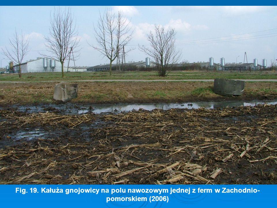 Fig. 19. Kałuża gnojowicy na polu nawozowym jednej z ferm w Zachodnio- pomorskiem (2006)