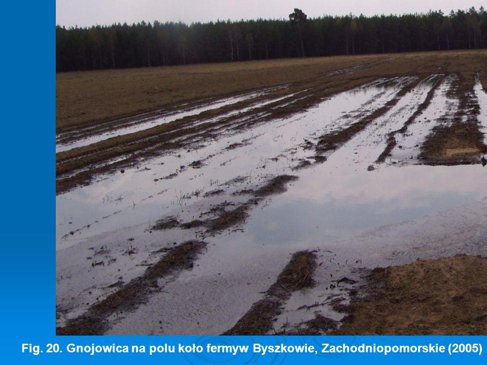 Fig. 20. Gnojowica na polu koło fermyw Byszkowie, Zachodniopomorskie (2005)