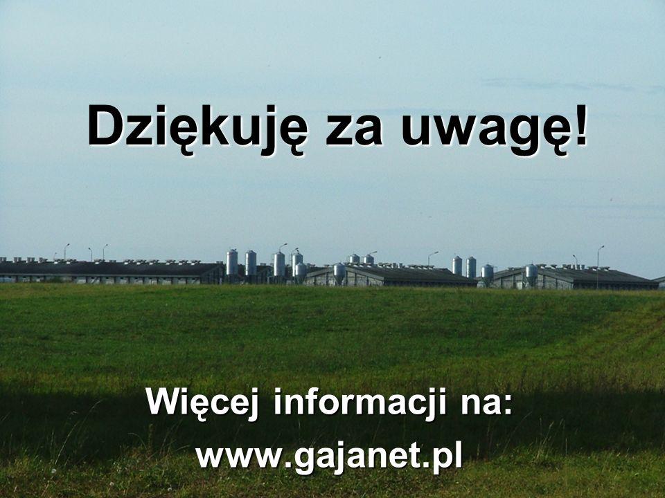 Więcej informacji na: www.gajanet.pl Dziękuję za uwagę!