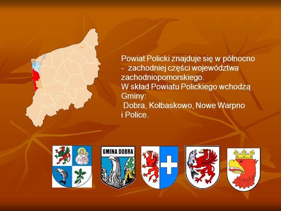 Powiat Policki znajduje się w północno - zachodniej części województwa zachodniopomorskiego. W skład Powiatu Polickiego wchodzą Gminy: Dobra, Kołbasko
