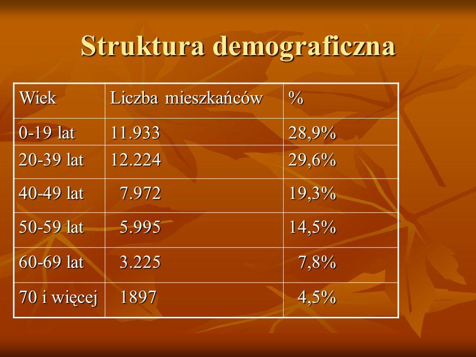 Struktura demograficzna Wiek Liczba mieszkańców % 0-19 lat 11.93328,9% 20-39 lat 12.22429,6% 40-49 lat 7.972 7.97219,3% 50-59 lat 5.995 5.99514,5% 60-