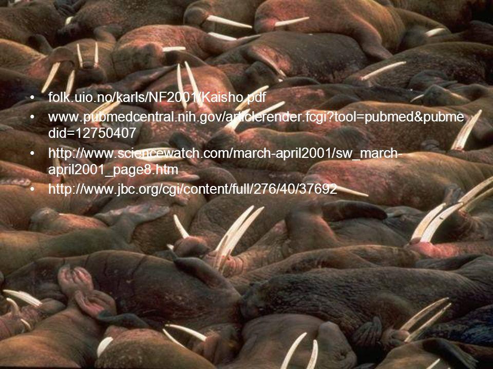 folk.uio.no/karls/NF2001/Kaisho.pdf www.pubmedcentral.nih.gov/articlerender.fcgi?tool=pubmed&pubme did=12750407 http://www.sciencewatch.com/march-apri