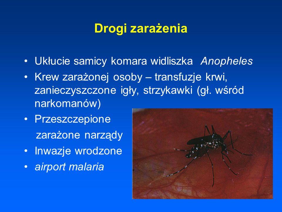 Drogi zarażenia Ukłucie samicy komara widliszka Anopheles Krew zarażonej osoby – transfuzje krwi, zanieczyszczone igły, strzykawki (gł. wśród narkoman