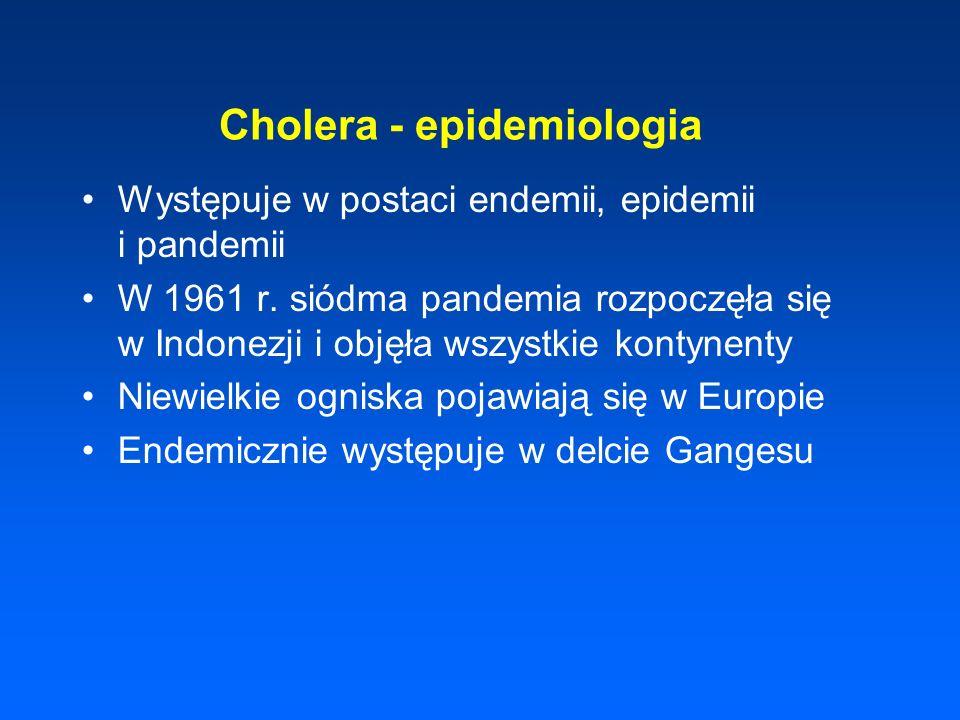 Cholera - epidemiologia Występuje w postaci endemii, epidemii i pandemii W 1961 r. siódma pandemia rozpoczęła się w Indonezji i objęła wszystkie konty