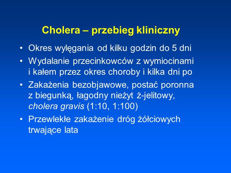 Cholera – przebieg kliniczny Okres wylęgania od kilku godzin do 5 dni Wydalanie przecinkowców z wymiocinami i kałem przez okres choroby i kilka dni po