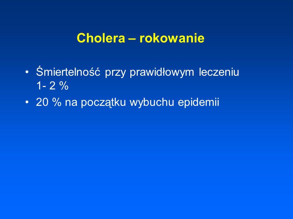 Cholera – rokowanie Śmiertelność przy prawidłowym leczeniu 1- 2 % 20 % na początku wybuchu epidemii