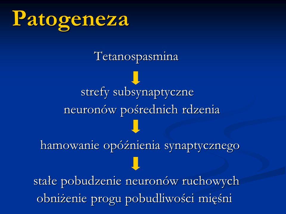 Patogeneza Tetanospasmina Tetanospasmina strefy subsynaptyczne strefy subsynaptyczne neuronów pośrednich rdzenia neuronów pośrednich rdzenia hamowanie