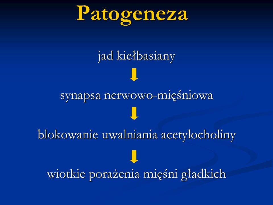 Patogeneza jad kiełbasiany synapsa nerwowo-mięśniowa blokowanie uwalniania acetylocholiny wiotkie porażenia mięśni gładkich