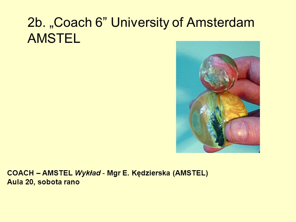 2b. Coach 6 University of Amsterdam AMSTEL COACH – AMSTEL Wykład - Mgr E. Kędzierska (AMSTEL) Aula 20, sobota rano
